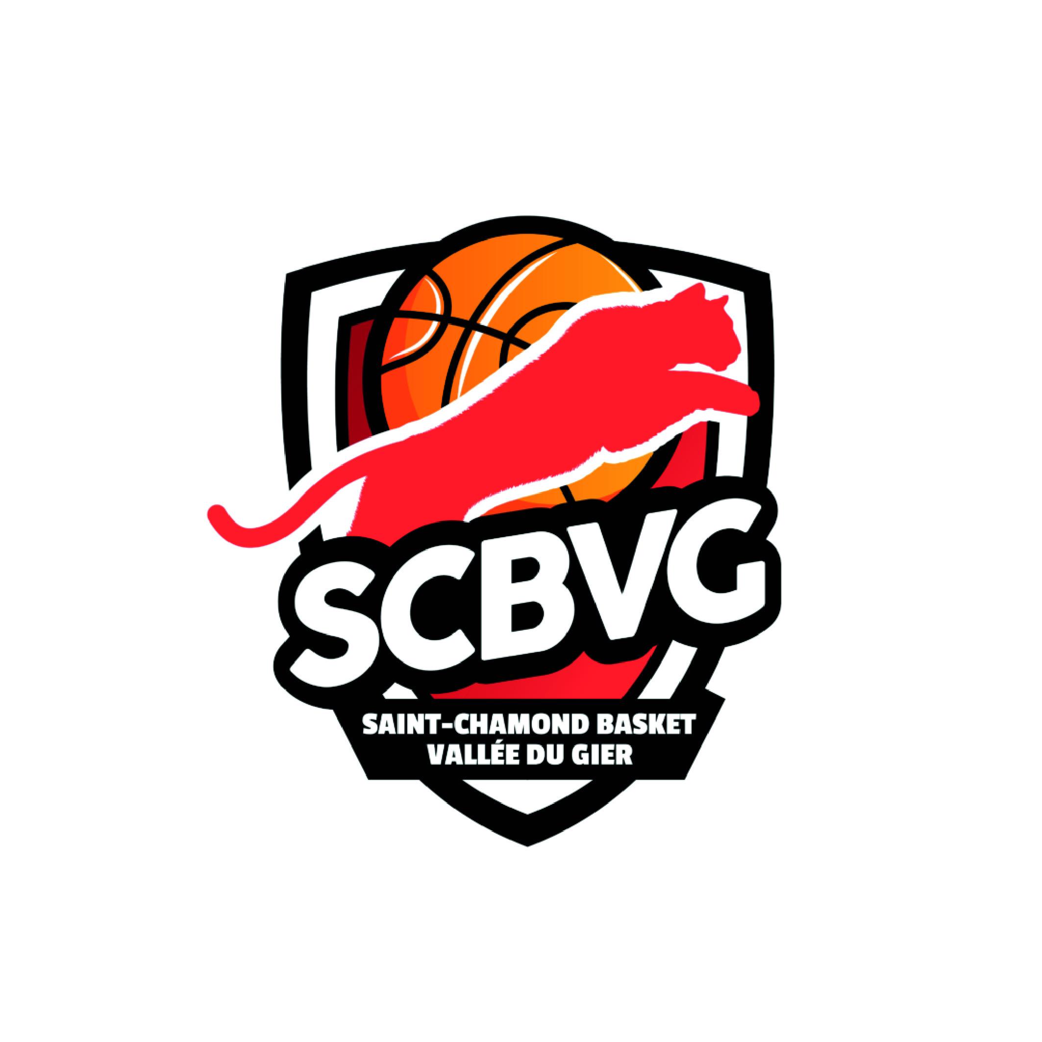 Recruteur Emploi sport - Saint-Chamond Basket